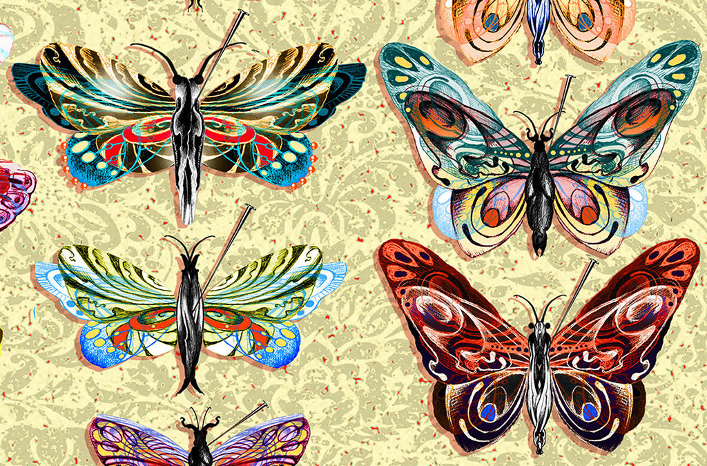 BUTTERFLY COLLECTION, DETAIL
