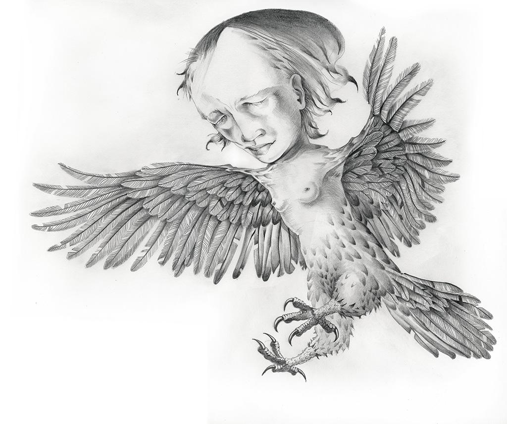 Harpy, graphite, 2010